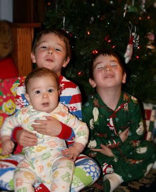 Christmas2008tree