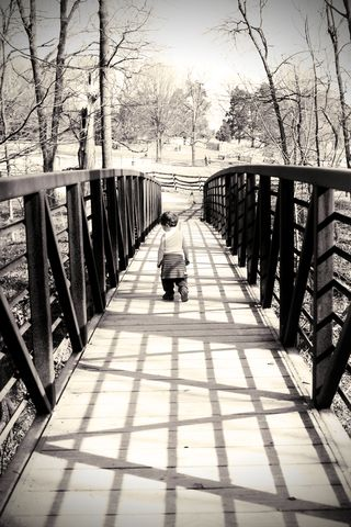 Bridge from forest trail